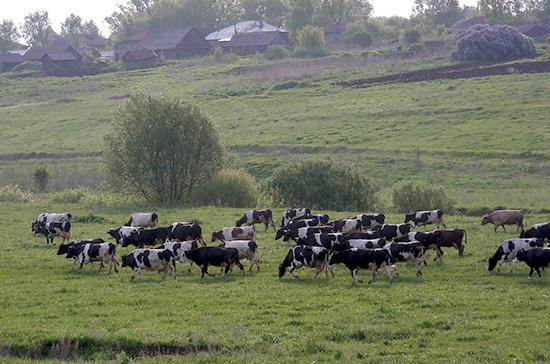 Белоруссия готова работать с российской системой ветсертификации продовольственных товаров