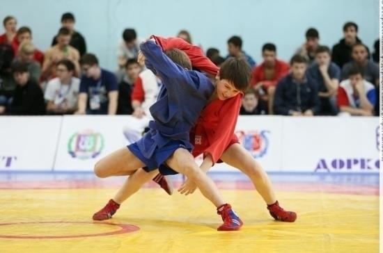 Елисеев: на проработку вопроса о включении самбо в олимпийскую программу дано три года