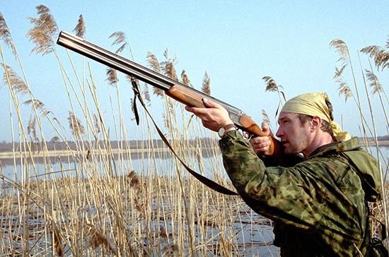 Правила продажи охотничьих ружей могут ужесточить