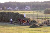 В России может появиться федеральное агентство по развитию села
