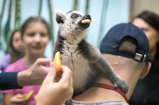 Контактные зоопарки попадут под запрет