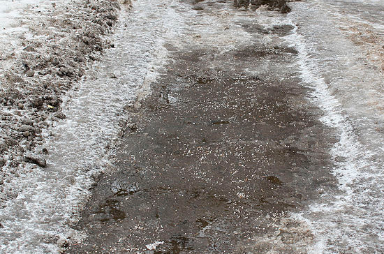 В «Справедливой России» предложили запретить использование реагентов на тротуарах