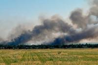 Подгруппа по безопасности согласовала новогоднее перемирие в Донбассе