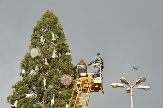В Никитском ботаническом саду вместо ёлки нарядили мамонтово дерево