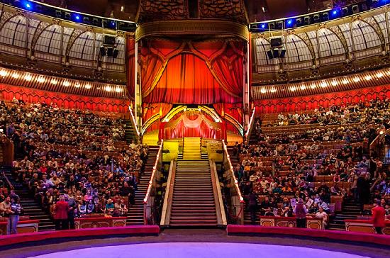 Депутат Ленобласти предложил увеличить возрастной порог для посещения цирка до 18+