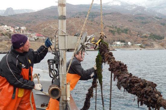 Крымские рыбные хозяйства получат водные участки без торгов