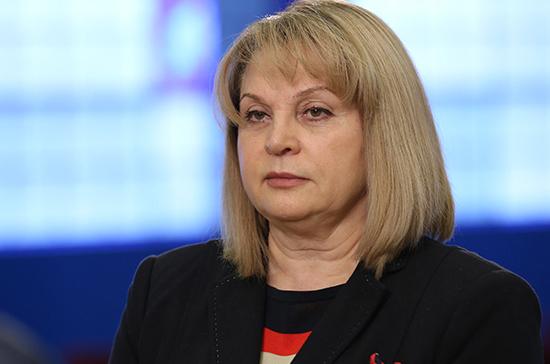 Памфилова попросила Путина помочь в наказании организаторов нарушений на выборах