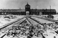 Советские войска освободили узников Освенцима 74 года назад
