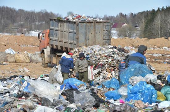 В Госдуме предложили разрешить прямые договоры на вывоз мусора