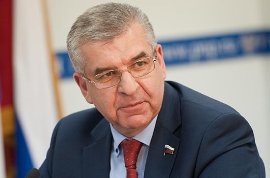 В Госдуме отметили важность общественных инициатив для территориального развития