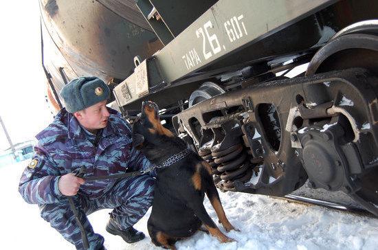 День транспортной полиции России