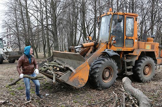 В Заксобрании Петербурга предложили наказывать за плохое содержание парков