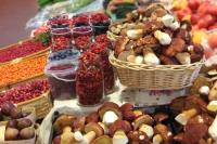 Россияне смогут заработать на продаже грибов и ягод