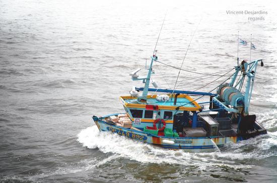 Сенатор прокомментировала закон об упрощении механизма продажи браконьерских лодок