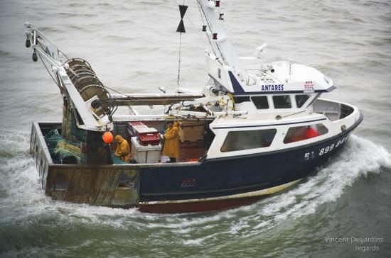 Правительство предлагает уничтожать конфискованные лодки браконьеров