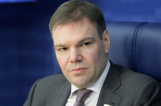 Левин внёс поправки к законопроектам о фейках и неуважении к обществу