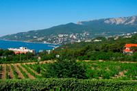 Изменится работа в рамках Свободной экономической зоны в Крыму