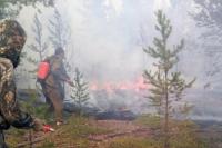 Количество лесных пожаров на Дальнем Востоке выросло более чем в 30 раз, сообщили в МЧС