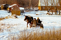 Минсельхоз предложил рецепт возрождения русской деревни