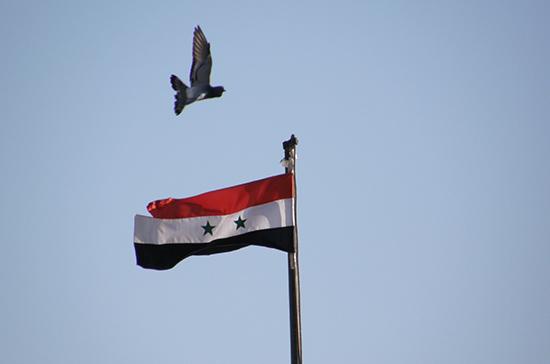 На юго-западе Сирии отпраздновали годовщину революции