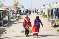 Роль России в решении ливийского конфликта очень значительна, заявил эксперт