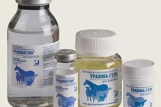 За ветеринарными препаратами хотят установить фармнадзор