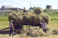 В Госдуму внесли законопроект о повышении пенсий труженикам села