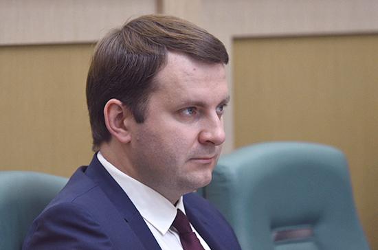 Орешкин: система электронных виз может заработать в России с 2020 года