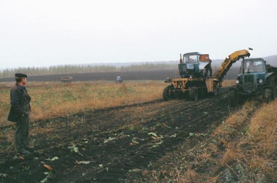 Медведев: стабильные цены на топливо должны обеспечить хорошую посевную