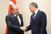 Володин выступил за скорейший запуск комиссии парламентов России и Турции