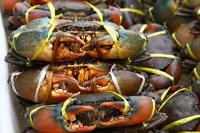 Деньги от добытого краба пойдут на развитие рыболовной отрасли