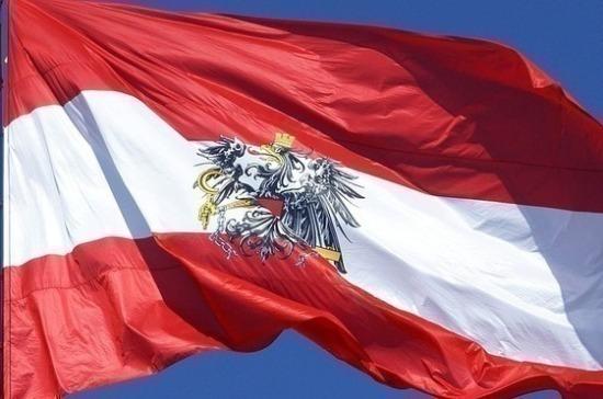 Партия «зелёных» в Австрии вложит 800 тысяч евро в избирательную кампанию
