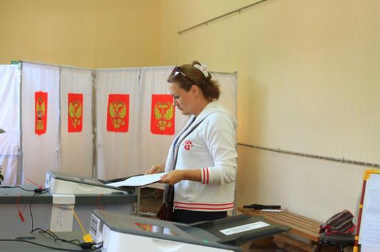 Шапошников: наблюдение за электронным голосованием на выборах в Мосгордуму усилят