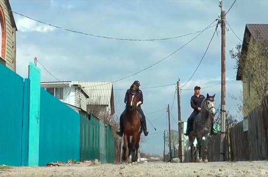 В Волгоградской области посёлки будет патрулировать конная полиция