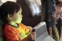 В Совфеде предложили IT-компаниям вместе обезопасить Интернет для детей