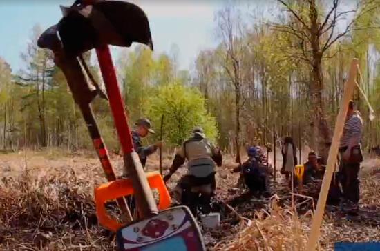 В Новгородской области поисковики нашли останки солдат ВОВ