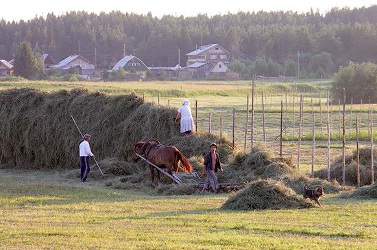 Фермерам хотят разрешить строить жильё на сельхозземлях