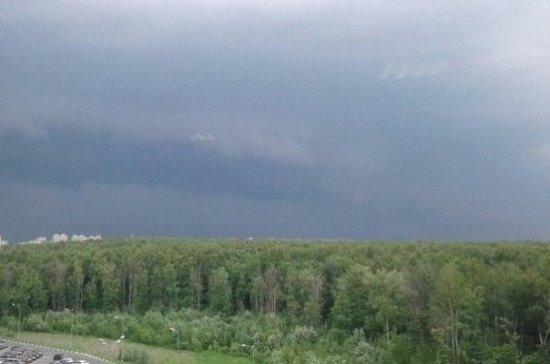 Петербуржцев предупредили о дожде и грозах 22 мая