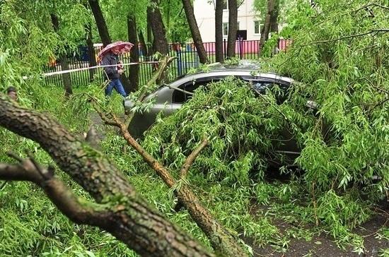 Эксперт рассказал, когда в Москве увеличивается вероятность природных катаклизмов