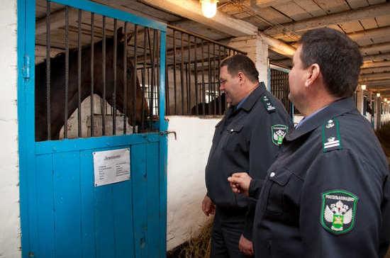 Полномочия в сфере ветеринарного надзора могут передать на федеральный уровень