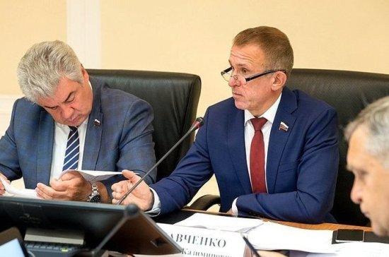 Сенатор заявил о необходимости наделения ДОСААФ статусом госавиации