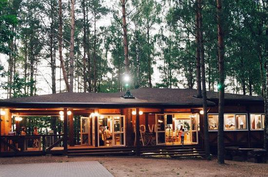 В России могут разрешить продажу алкоголя на землях лесного фонда