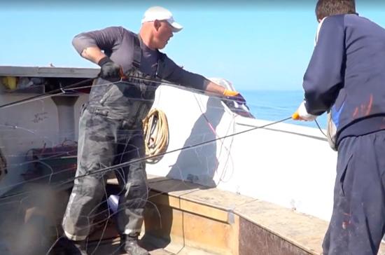 Правительство внесло в Госдуму проект об отмене плановых проверок рыбопромысловых судов