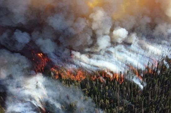 В Минэкономразвития прокомментировали проект об изъятии земли за нарушение пожарной безопасности
