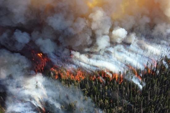 Минэкономразвития подготовило проект об изъятии земли за нарушение пожарной безопасности