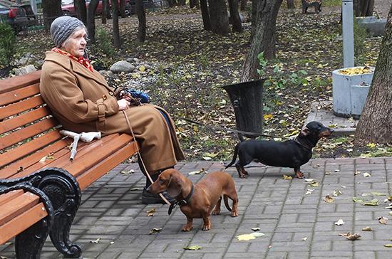 В Вологодской области учредили должность уполномоченного по правам пенсионеров и ветеранов