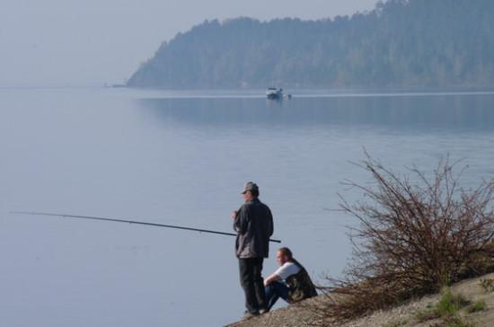 Комитет Госдумы рекомендовал ко II чтению проект о расчёте ущерба от незаконного вылова рыбы