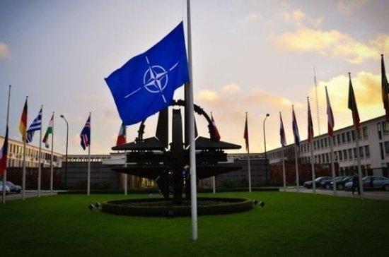 Эксперт оценил заявление Байдена о возможном распаде НАТО при Трампе