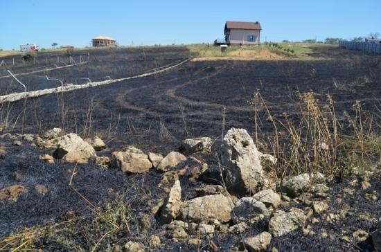 Под Севастополем сгорело лавандовое поле