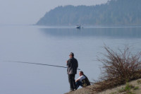 Методику расчёта ущерба от незаконного вылова рыбы предложили усовершенствовать